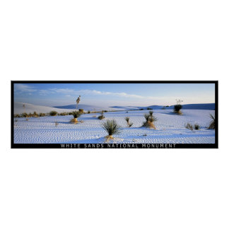 Yucca Panorama Poster