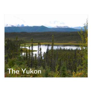 Yukon Pond Postcard