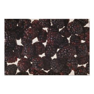 Yummy Blackberries Posters
