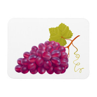 Yummy Bunch Of Red Grapes Vinyl Magnet