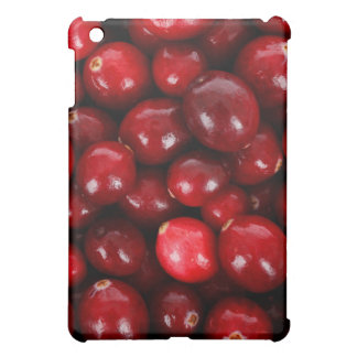 Yummy cranberry cover for the iPad mini
