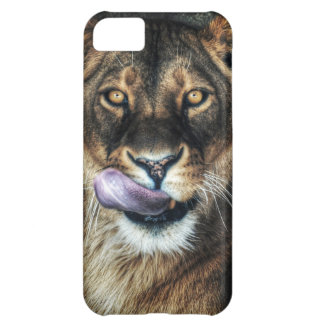 Yummy - lioness licking cover for iPhone 5C