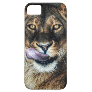 Yummy - lioness licking iPhone 5 covers