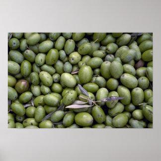Yummy Olives Print