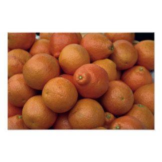 Yummy State-grown oranges Poster