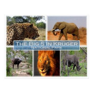 ZA South Africa - The Big 5 In Krugen N.P. - Postcard
