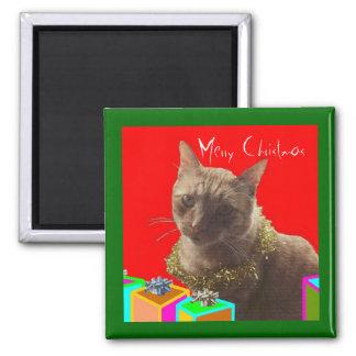 Zack The Xmas Cat Square Magnet
