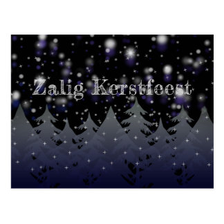 Zalig Kerstfeest Dutch Christmas Starry Night Snow Postcard