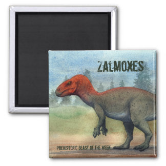 Zalmoxes Magnet