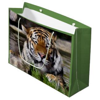 Zambar Tiger Gift Bag