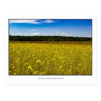 Zay Prairie Postcard