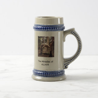 zazzle pics2, The Miracles of ALLAH! Beer Stein