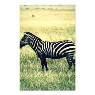 Zebra 14 Cm X 21.5 Cm Flyer