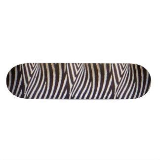 Zebra 20 Cm Skateboard Deck