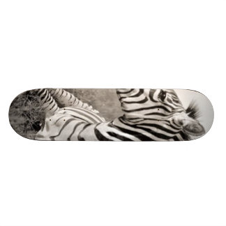 Zebra 21.3 Cm Mini Skateboard Deck