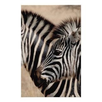zebra-927272_Fotor.jpg 14 Cm X 21.5 Cm Flyer