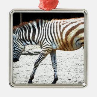 Zebra Animal Christmas Ornaments