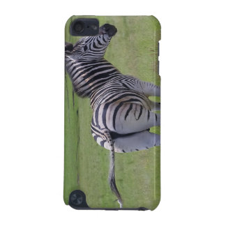 Zebra Attitude iTouch Case iPod Touch 5G Covers