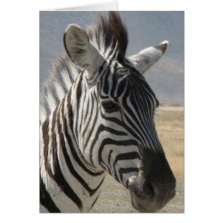 Zebra baby card