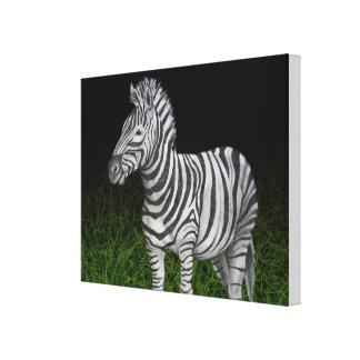 Zebra black and green canvas print