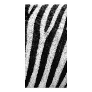 Zebra Black and White Striped Skin Texture Templat Photo Card Template