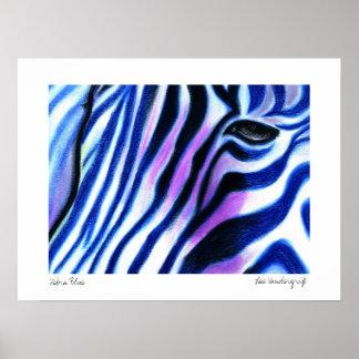 Zebra Blue poster by Lee Vandergrift