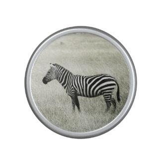 Zebra Bluetooth Speaker