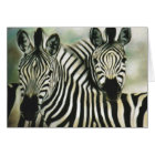 """Zebra Buddies"" Card"