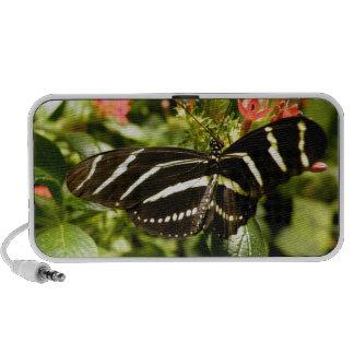 Zebra Butterfly PC Speakers