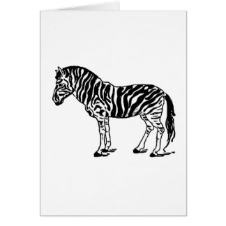 zebra greeting cards