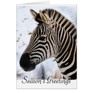 Zebra Christmas card
