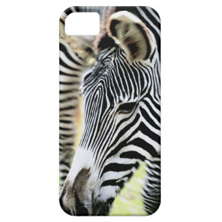 Zebra, close-up, selective focus barely there iPhone 5 case