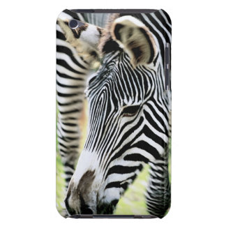 Zebra, close-up, selective focus barely there iPod cover