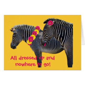Zebra design with fun gerber daisies greeting card