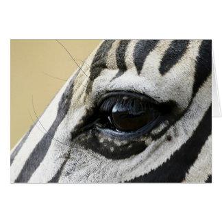 Zebra Eye Card