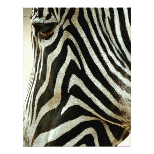 Zebra Flyer