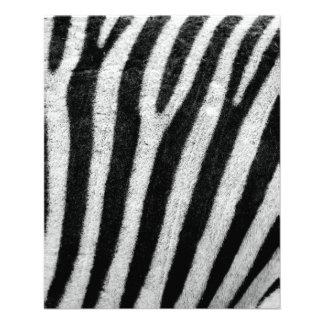 Zebra Full Color Flyer