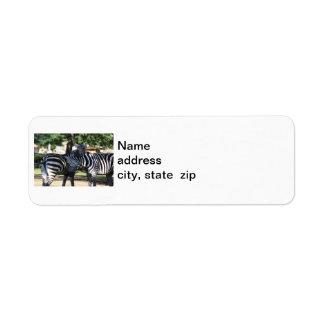 Zebra Friends Return Postage Stamps Return Address Label