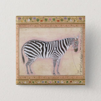 Zebra, from the 'Minto Album', 1621 (gouache on pa 15 Cm Square Badge