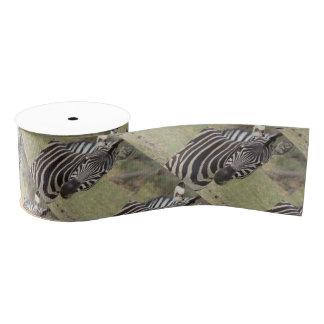 zebra grosgrain ribbon