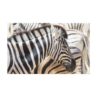 Zebra Head Wall Decoration Canvas Print