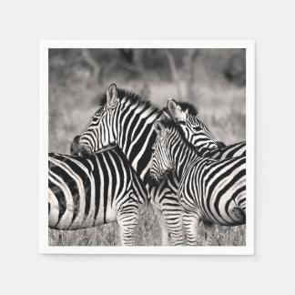 Zebra Herd Nature Safari Black and White Stripes Disposable Napkin