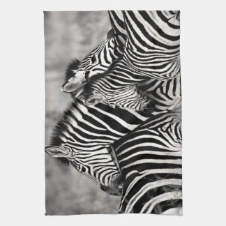 Zebra Herd Nature Safari Black and White Stripes Towel