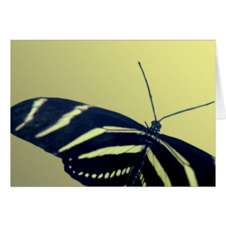 Zebra Longtail Greeting Cards