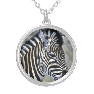 Zebra Lovers Silver Plated Necklace