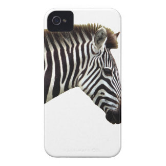 zebra-on-the-masai-mara iPhone 4 cases