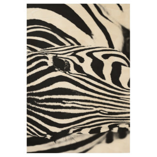 Zebra portrait black and white wood poster