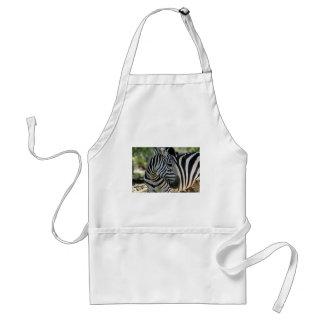 Zebra Pose Apron
