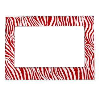 ZEBRA PRINT-RUBY RED MAGNETIC FRAME