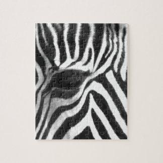 Zebra Puzzles